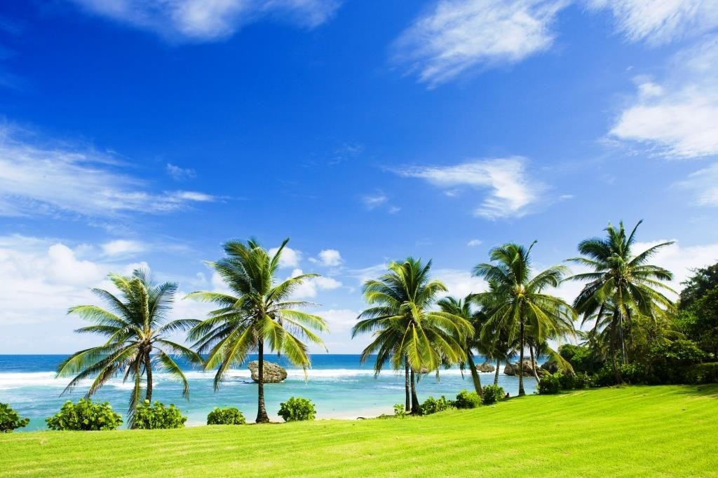 Bathsheba, East coast of Barbados, Caribbean - 46510684