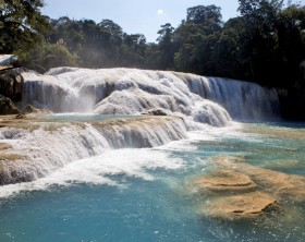 Cascada de Agua Azul en la selva chiapaneca