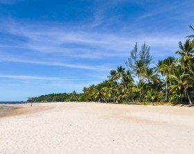 Palm trees and sand in Boipeba Island Beach Morro de Sao Paulo, Salvador, Brazil