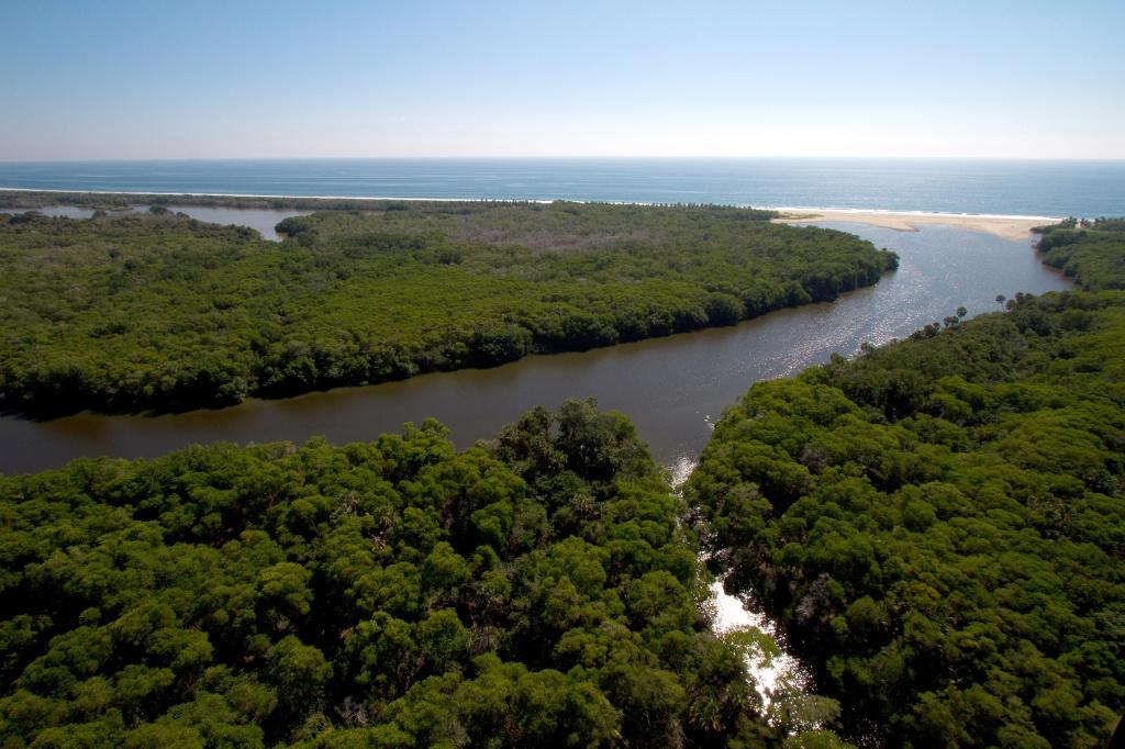 Laguna de Manialtepec (1)