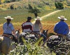 Horseback riding with a Huaso - baixa