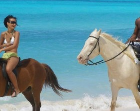 Seaside Stables Anguilla 2