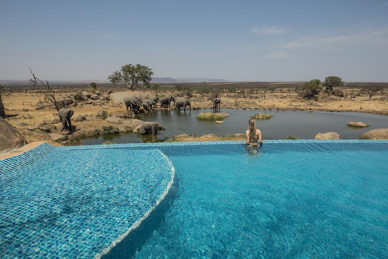 safari no Serengeti Tanzania