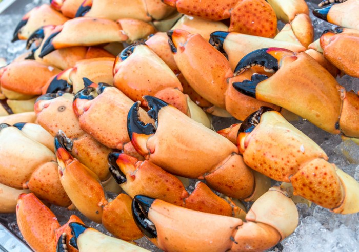 Stone Crab Claws Ready to Eat
