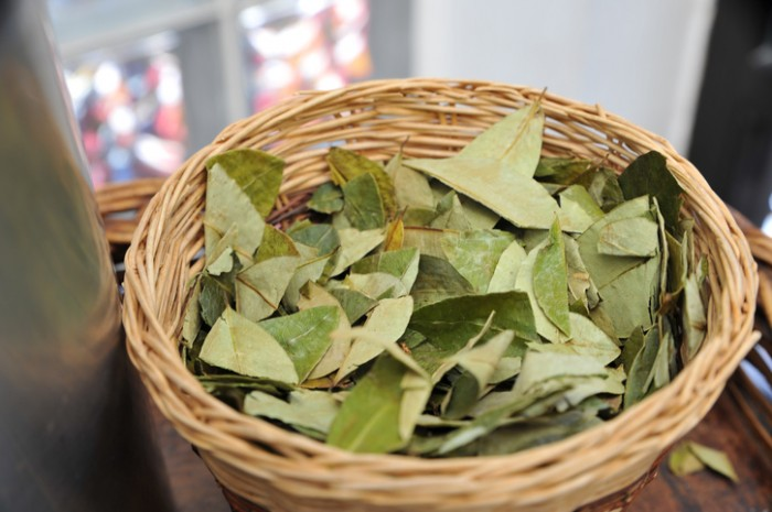 Coca leaves in a wooden basket.