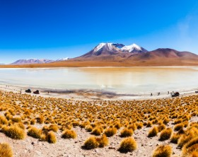 Aerial view of Laguna Canapa, it is a salt lake in the altiplano of Bolivia