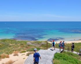 Rockingham,WA,Australia-November 8,2013: Families hiking the metal walkway in the green dunes of Penguin Island in Western Australia.
