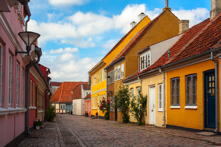 A Cobbletone Street In Odense with Coloured Houses