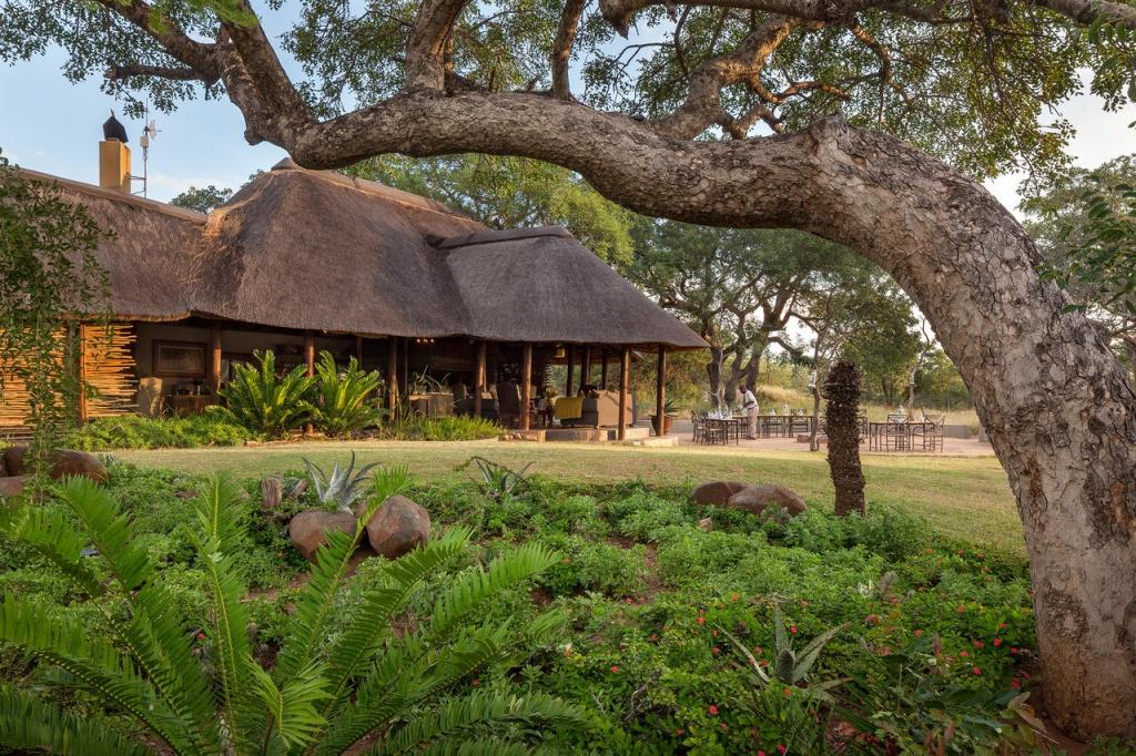 Foto por Divulgação/ Thornybush Luxury Game Lodge Collection