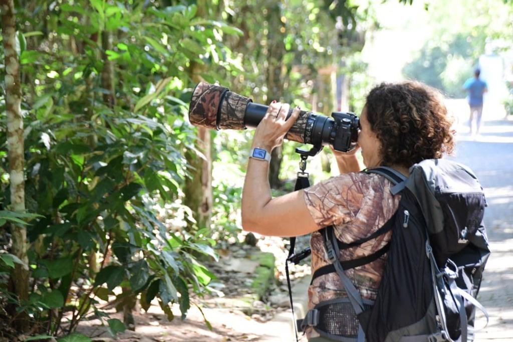 fotografando-passaros