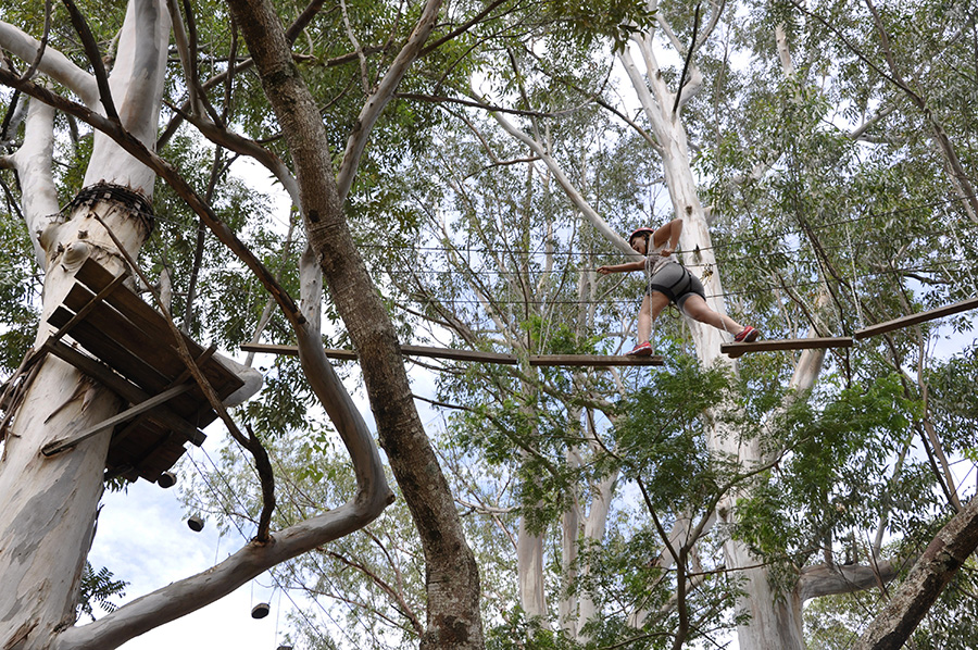 Foto por Cris Marques via raizesdomundo.com
