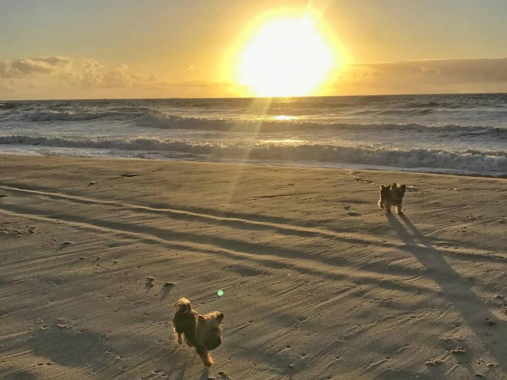 por-do-sol-na-praia-de-porto-de-galinhas