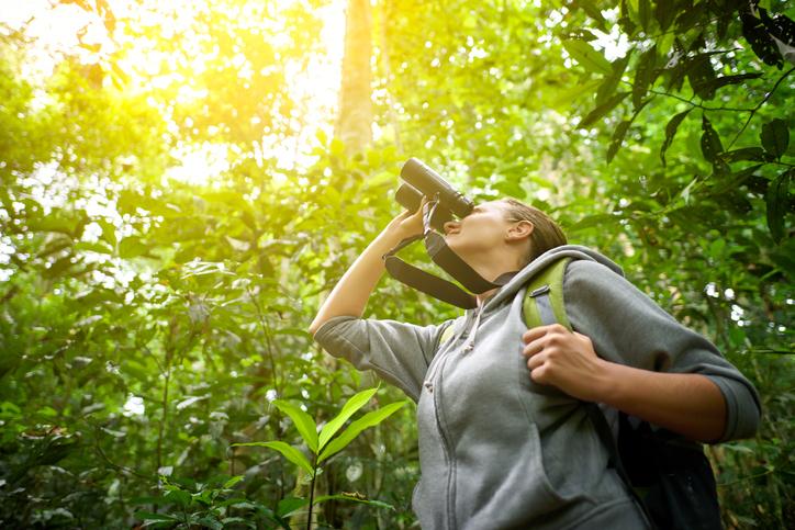 Tourist looking through binoculars considers wild birds in the jungle. Bird watching tours