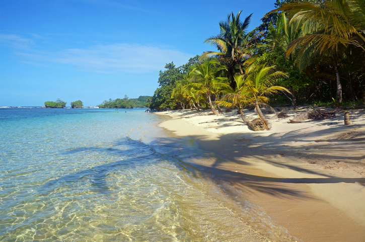 Pristine beach with shade of coconut trees on the sand and islands in background, Caribbean, Bocas del Toro, Panama
